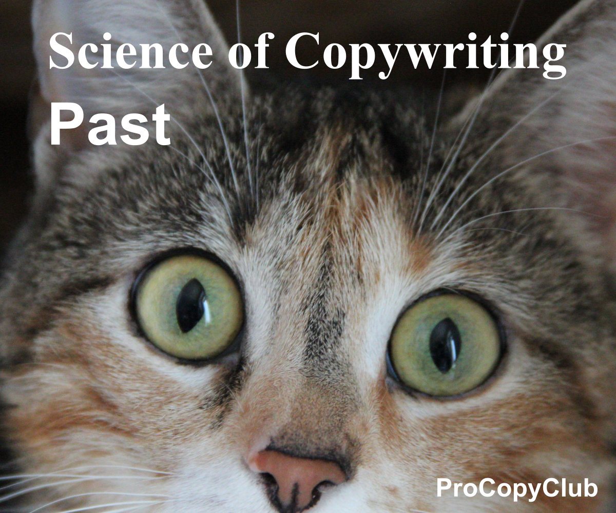 past and copywriting - image of cat