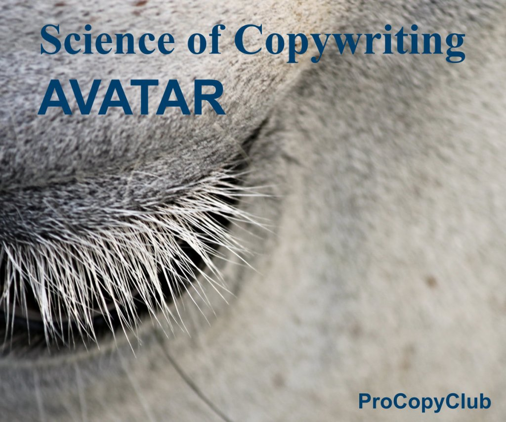 How To Start Thinking About An Avatar - image of an eye