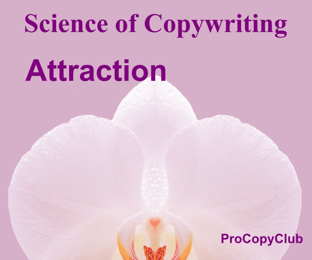 What Makes A Professional Copywriter Successful? - image of orchid