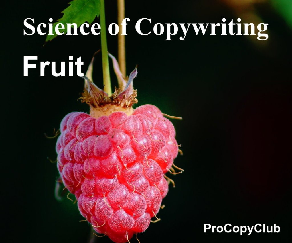 The No Tricks Or Hacks Method Of Getting New Clients For Copywriters (image of fruit)
