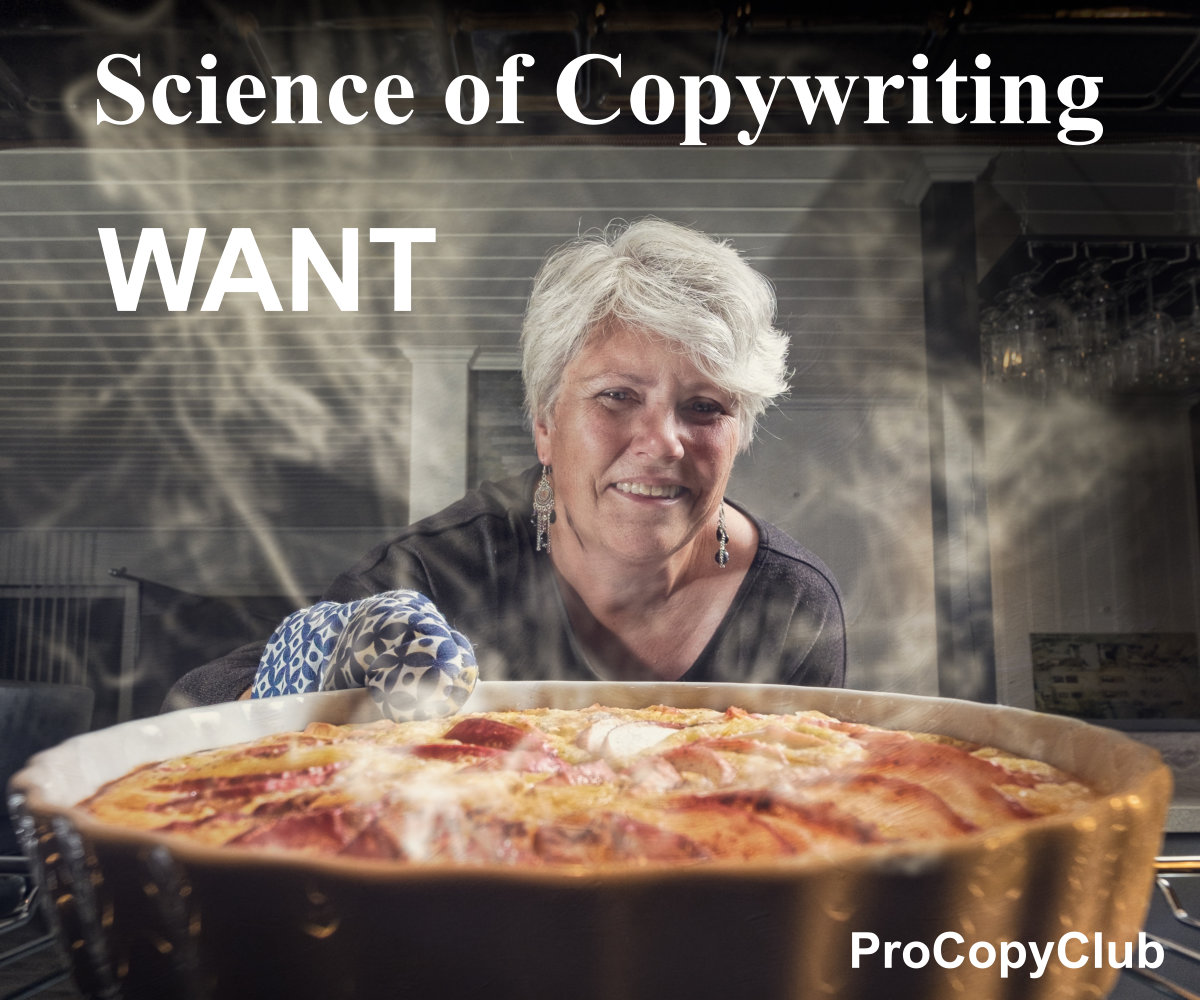 Turning Wants Into Needs And Other Things Important To Copywriters Looking For New Clients