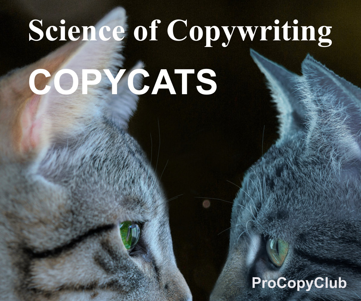 How To Cope When All Your Copywriting And Content Is Being Ripped Off