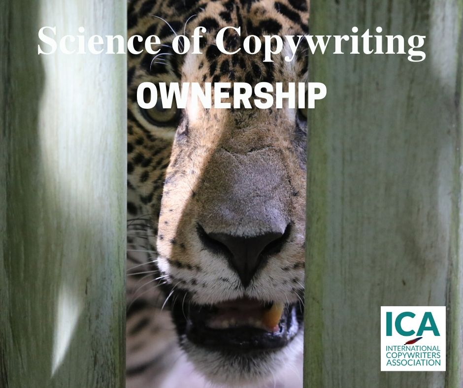 Build Desire Through Ownership [Copywriting Tips]