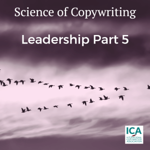 How to become a leader in the copywriting industry. Part 5