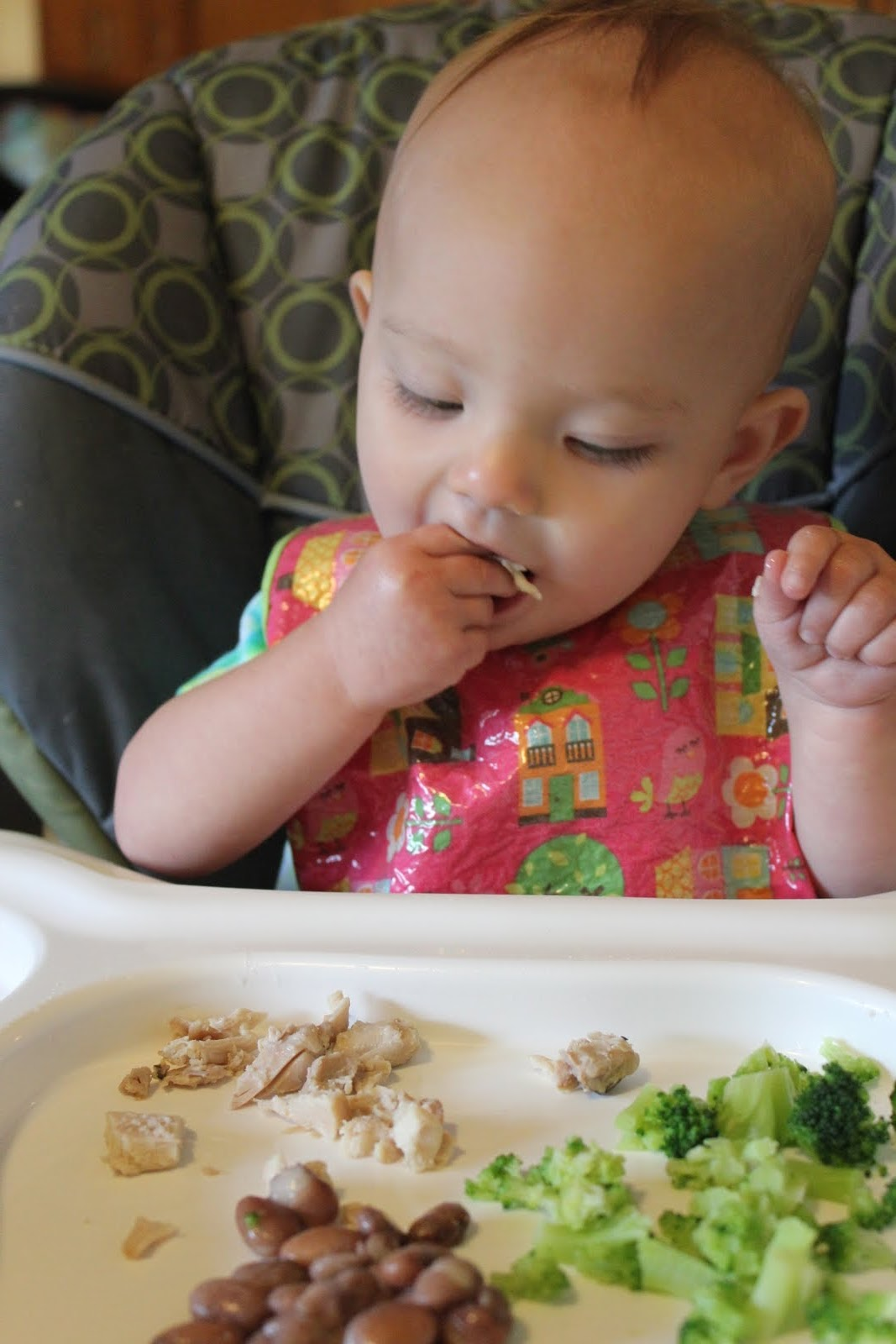 10 Tips for Starting Your Baby on Solid Food  The Science of Mom