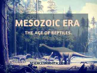age-of-reptiles
