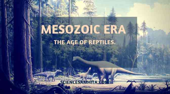Mesozoic Era – the Age of Reptiles.