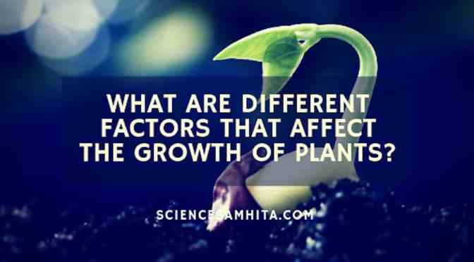 What are different factors that affect the growth of plants