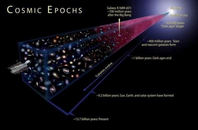 bicep 2 sciencesprings