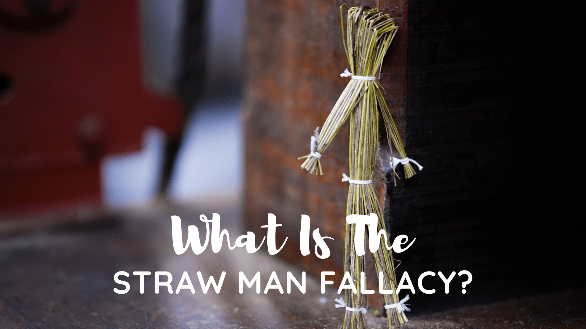 Straw Man Fallacy Example Arguments