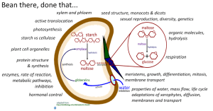 09 Plant Science (AHL) | iBiology