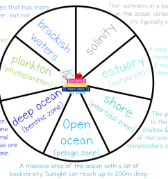 Upcoming Ocean Vocabulary Wheel – Science with Mrs. Barton [ 720 x 1280 Pixel ]