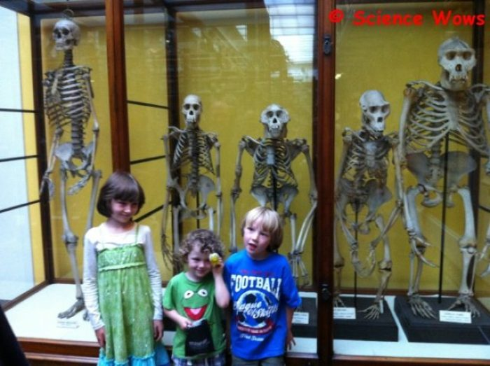 """Visiting """"relatives"""" at the National History Museum!"""