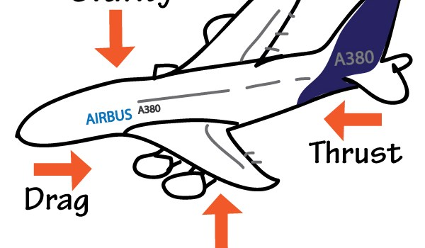 [WATCH] How do planes stay up in the air?