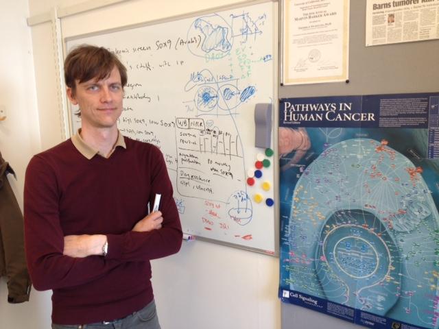 Fredrik Swartling, research group leader at Uppsala University