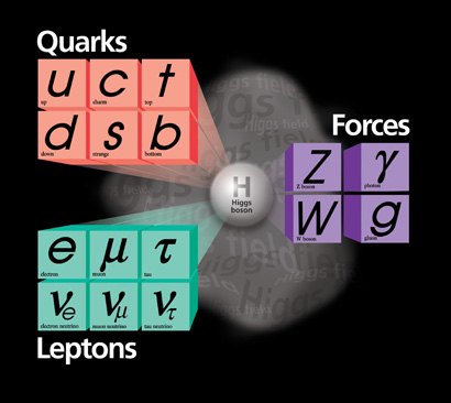 chart of fundamental particles