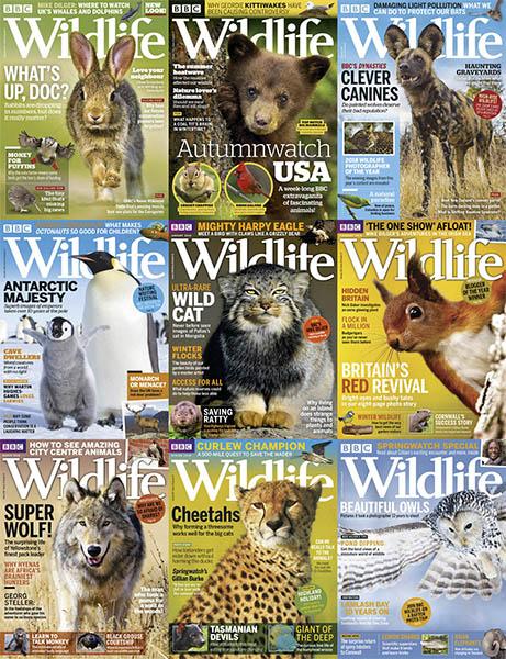 BBC-Wildlife-2018-FullYear BBC Wildlife - 2018 Full Year Collection