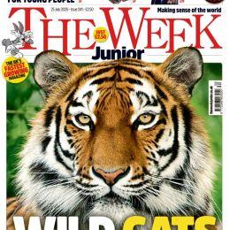 scientificmagazines The-Week-Junior-UK-25-July-2020 The Week Junior UK - 25 July 2020 Hobbies & Leisure time  The Week Junior UK