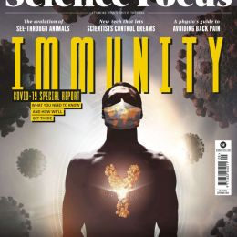 scientificmagazines BBC-Focus-September-2020 BBC Focus - September 2020 Science related  BBC Focus