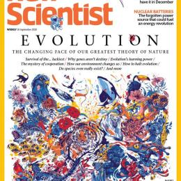scientificmagazines New-Scientist-September-26-2020 New Scientist - September 26, 2020 Science related  New Scientist