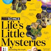 Life's Little Mysteries - September 2021
