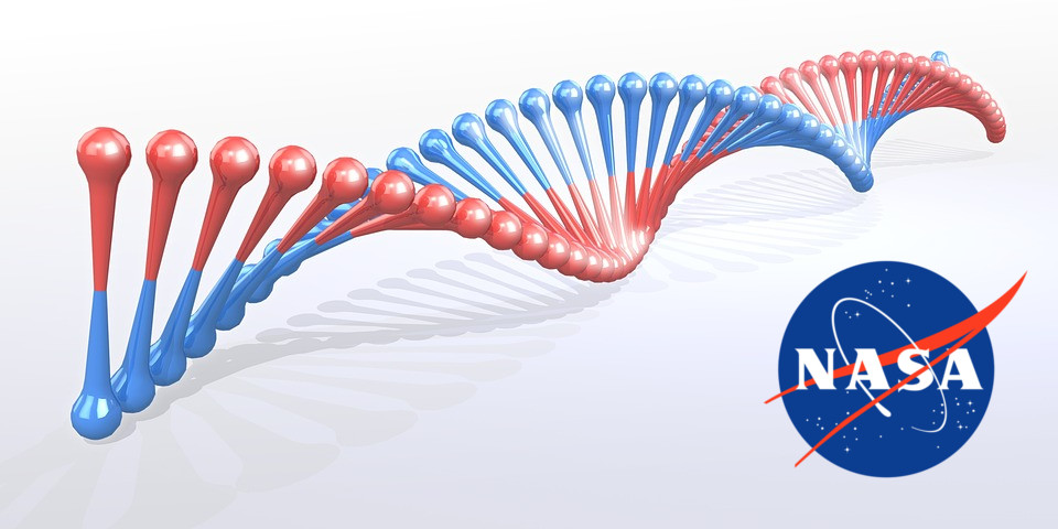 NASA research creates a new form of DNA, artificially.