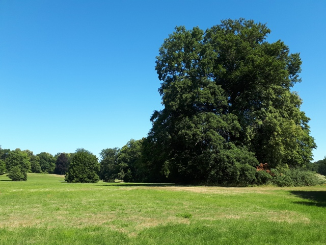 Park Mużakowski Ścieżki Mojego Świata