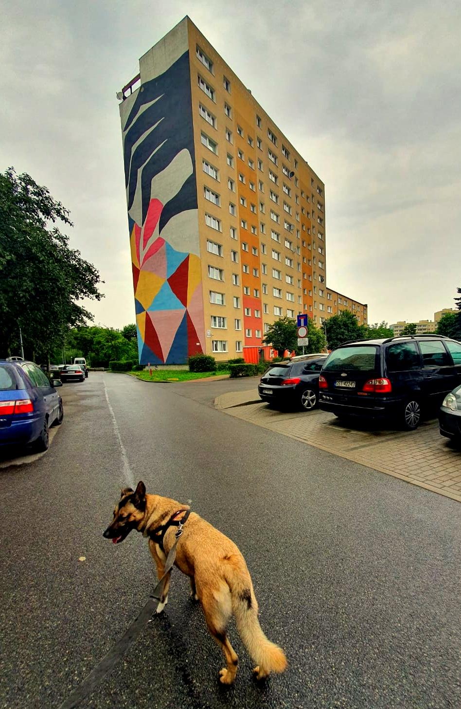 Sevdah Zaspa Gdańsk