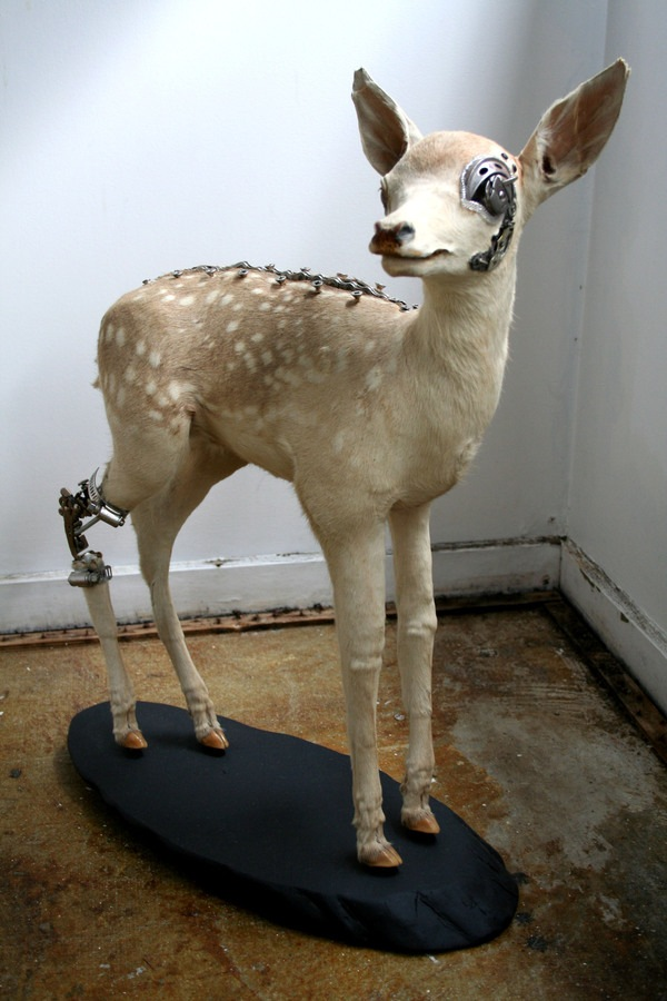 543381225158011 thumb Extreme Steampunk Beyond the Grave Terminal Techno Taxidermy