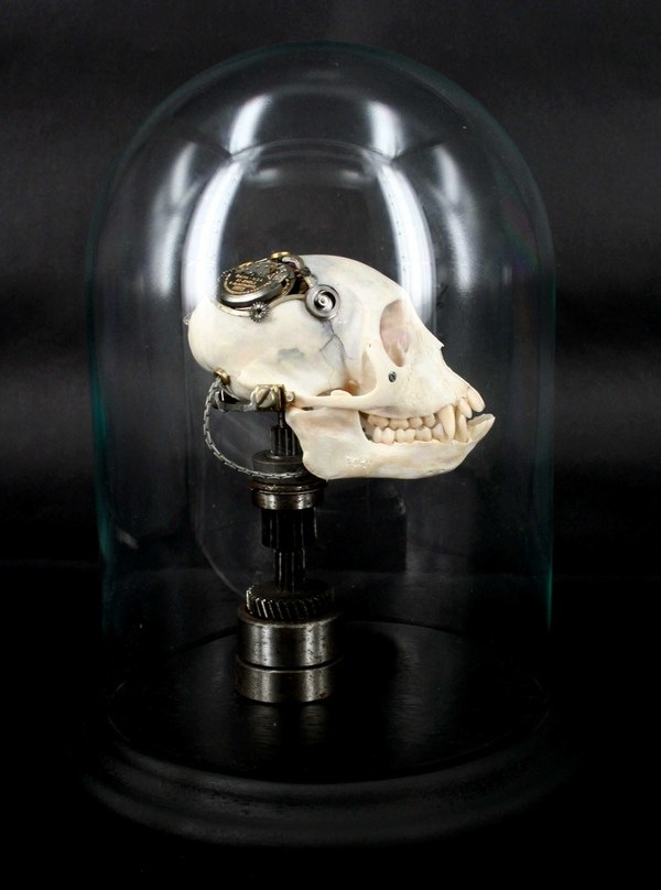 543381269296146 thumb1 Extreme Steampunk Beyond the Grave Terminal Techno Taxidermy