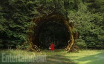 into-woods-red-riding-hood-1024x635