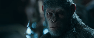 War for the Planet of the Apes (11)