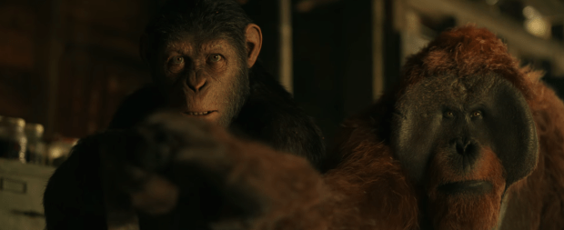 War for the Planet of the Apes (5)