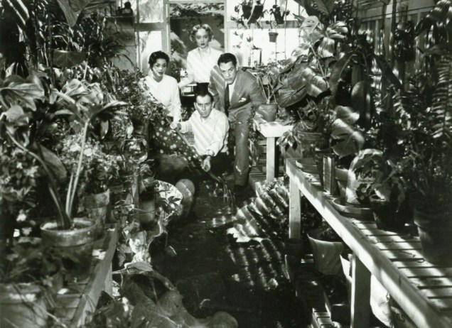 Invasion Of The BodySnatchers - 1956