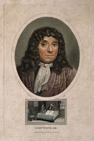 Antonius van Leeuwenhoek. Coloured stipple engraving by J. Chapman, 1813, after J. Verkolje. [CC BY 4.0 (http://creativecommons.org/licenses/by/4.0)], via Wikimedia Commons