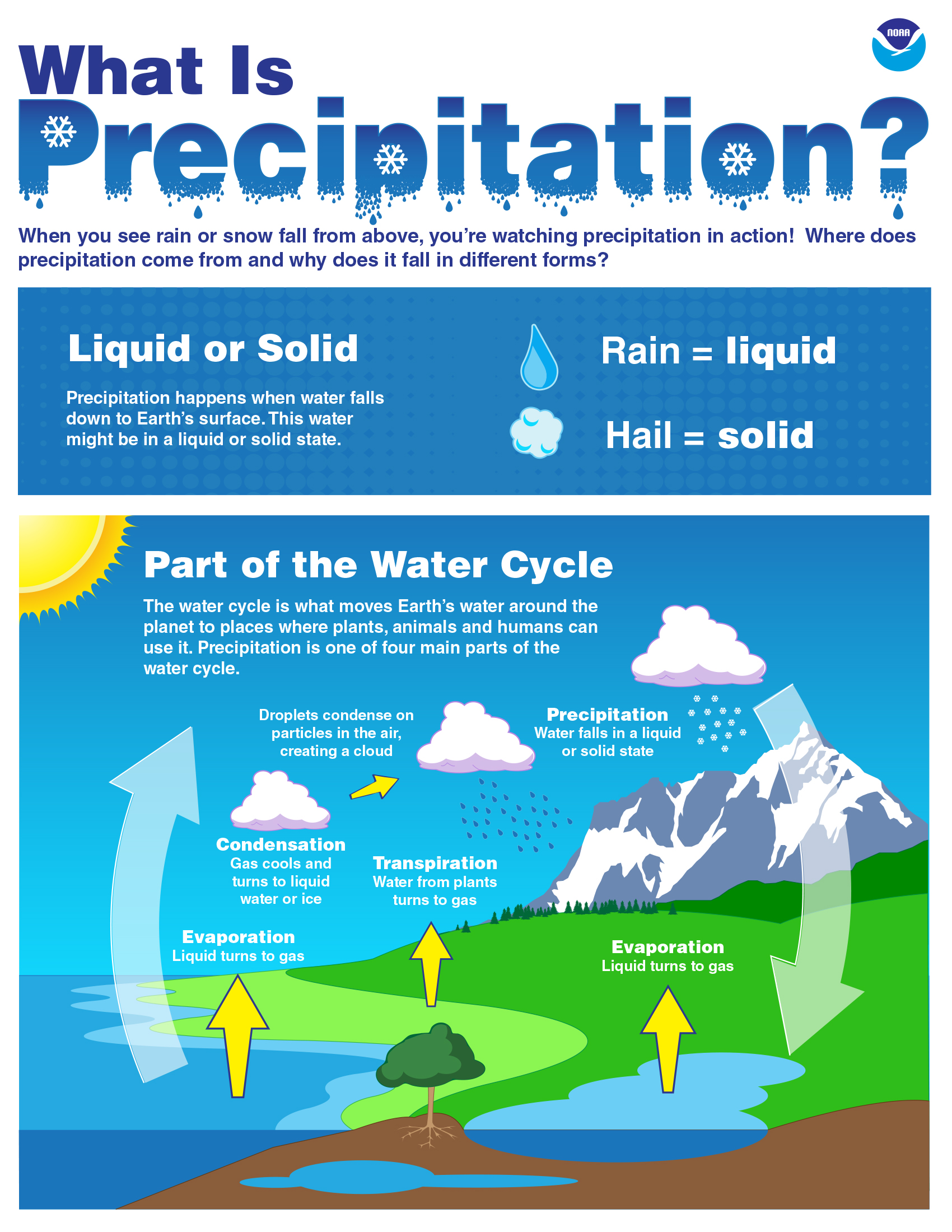 How Does Water Get Beneath Earth S Surface After It Rains