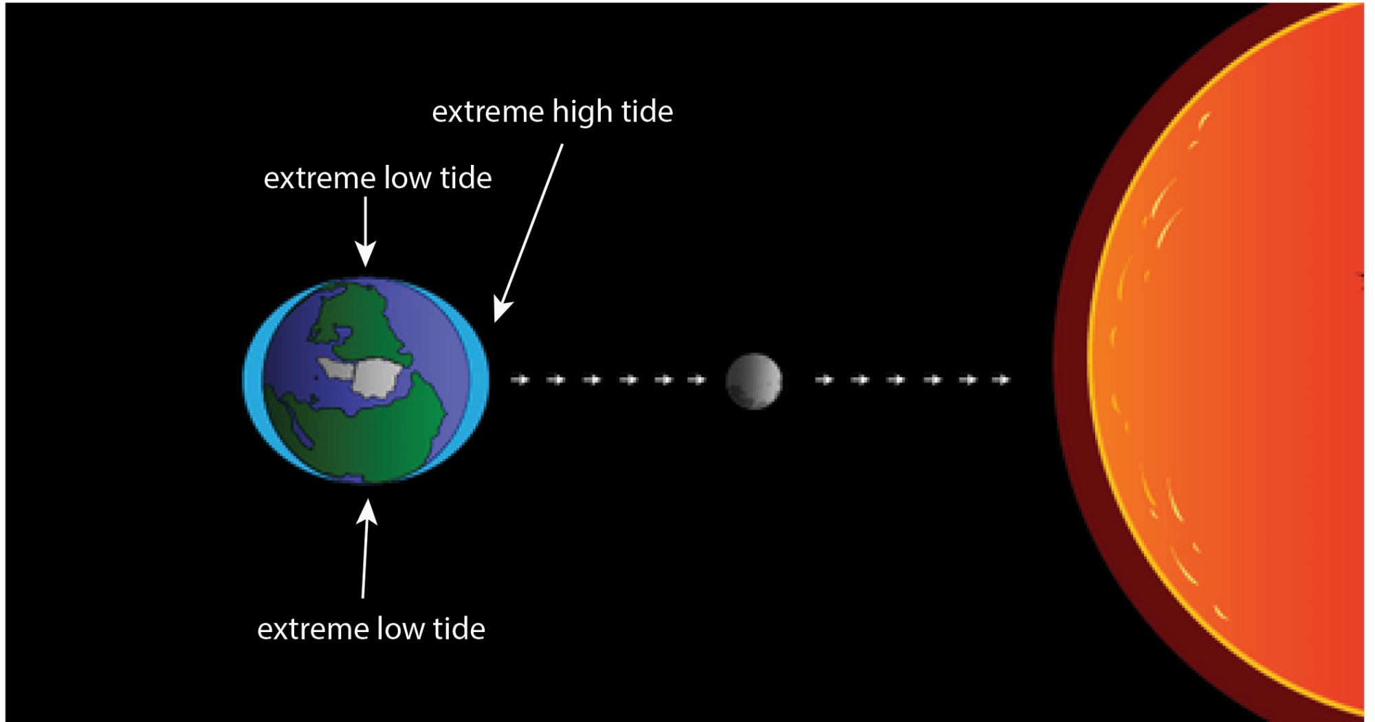 hight resolution of when the gravitational pull of the sun and moon are combined you get more extreme
