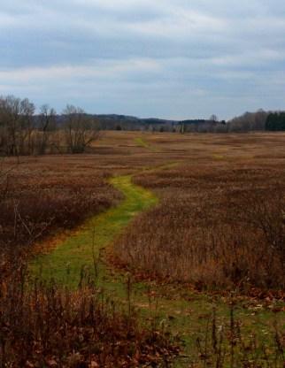 late fall path