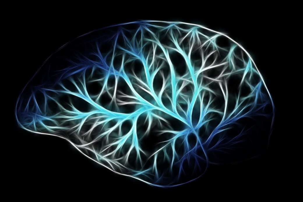 brain-2676370-e1515819714419.jpg