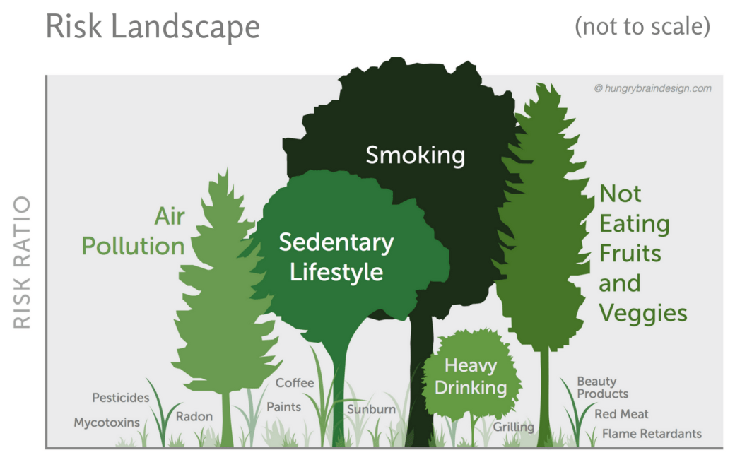 Chart titled the Risk landscape with risk ratio as the y axis. Trees and grass represent different risks with bigger plants as bigger risks, such as smoking as the largest risk and radon as one of the smallest.