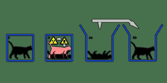schrodinger cat experiment