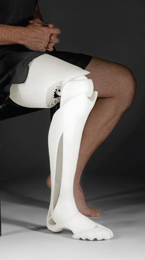 Artificial Limbs by Scott Stummit (6)