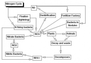 biological weathering diagram solar array wiring green generation - science olympiad student center wiki