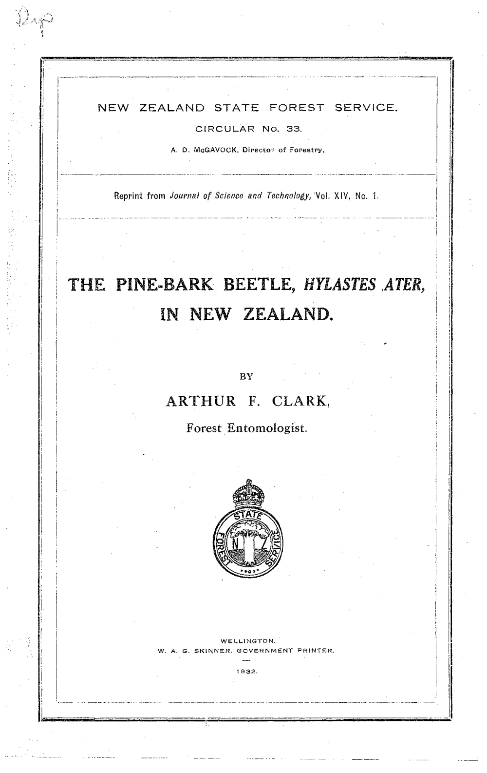 medium resolution of the pine bark beetle hylastes ater in new zealand