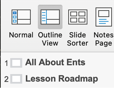 Outline view in PowerPoint showing two slide titles (All About Ents and Lesson Roadmap).
