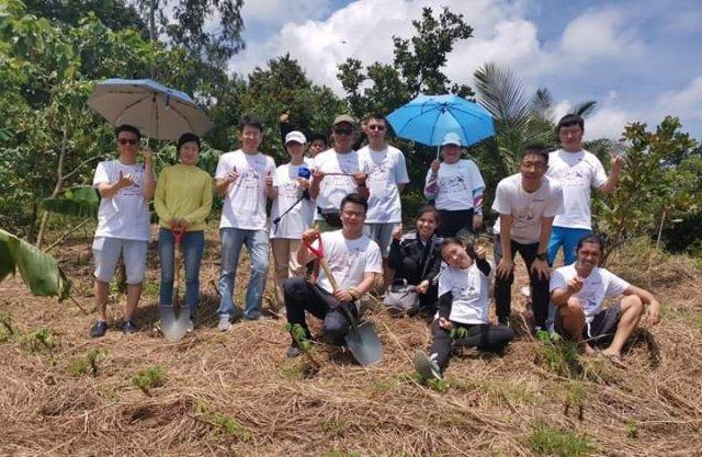 Huawei, tree planting, CSR, Philippines, China, narra, fruit bearing trees