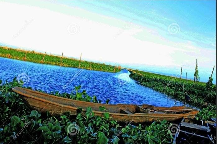 Antiotics,Steroid hormones, fecal bacteria, pollutants, Laguna Lake, DOST