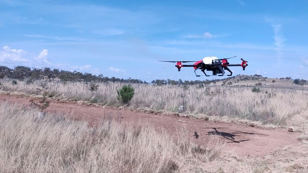 XAG Agricultural Drone seeded the degraded pasture in Australia