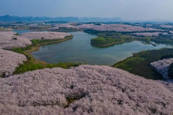 Guian's ecological landscape