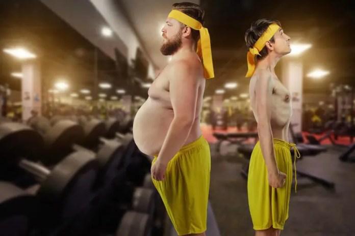 Anorexia Nervosa Skinny Obese